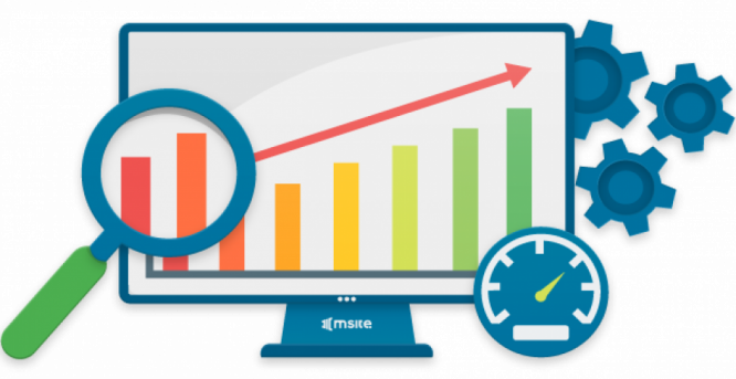 Search Engine Optimization in South Africa